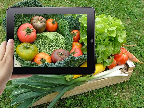 Internet au service de l'agriculture locale  >>>  La Gazette sud-Isère